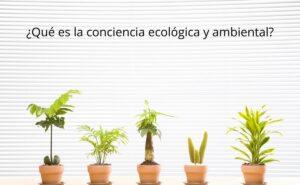 conciencia ecológica y ambiental