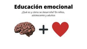 Educación emocional, Cerebro más corazón