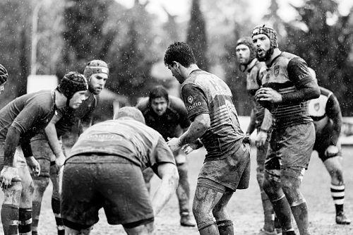 Rugby, violencia y masculinidades - Equipo de rugby masculino